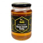 Sallandse Blauwe bessen honing 450 gram